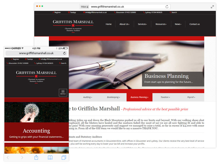 Griffiths Marshall website example