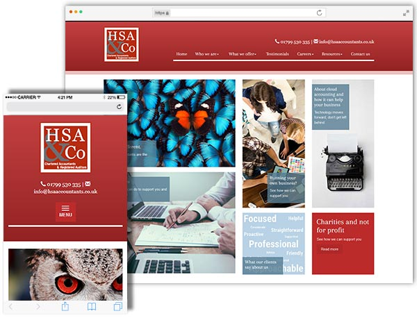 HSA & Co website example